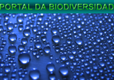 Gestão sustentável dos recursos hídricos é tema de evento internacional na SMA