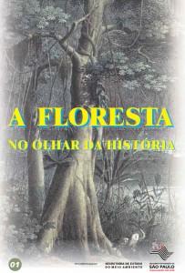 a-floresta-no-olhar-da-historia