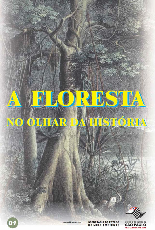 A Floresta no Olhar da História