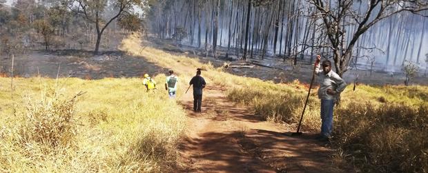 Continua o combate aos incêndios pela Operação Corta-Fogo