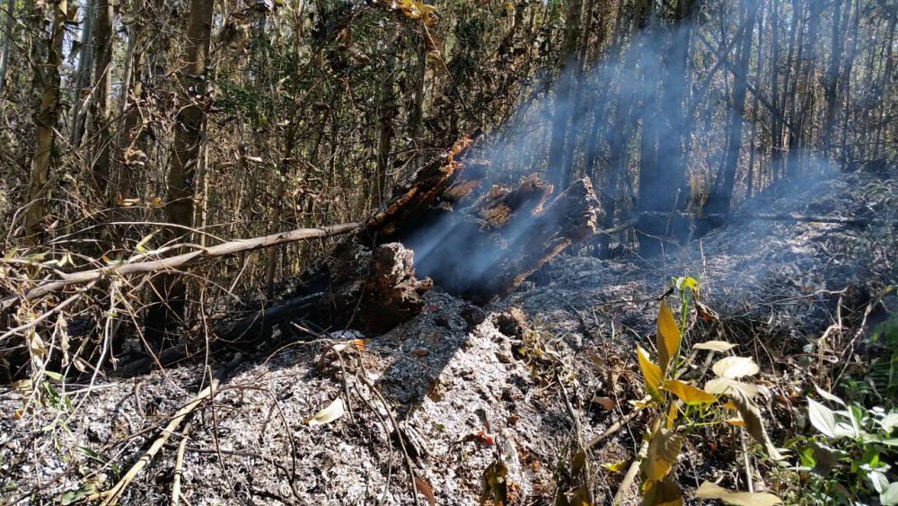 Equipes atuam em rescaldo de incêndios nas Unidades de Conservação