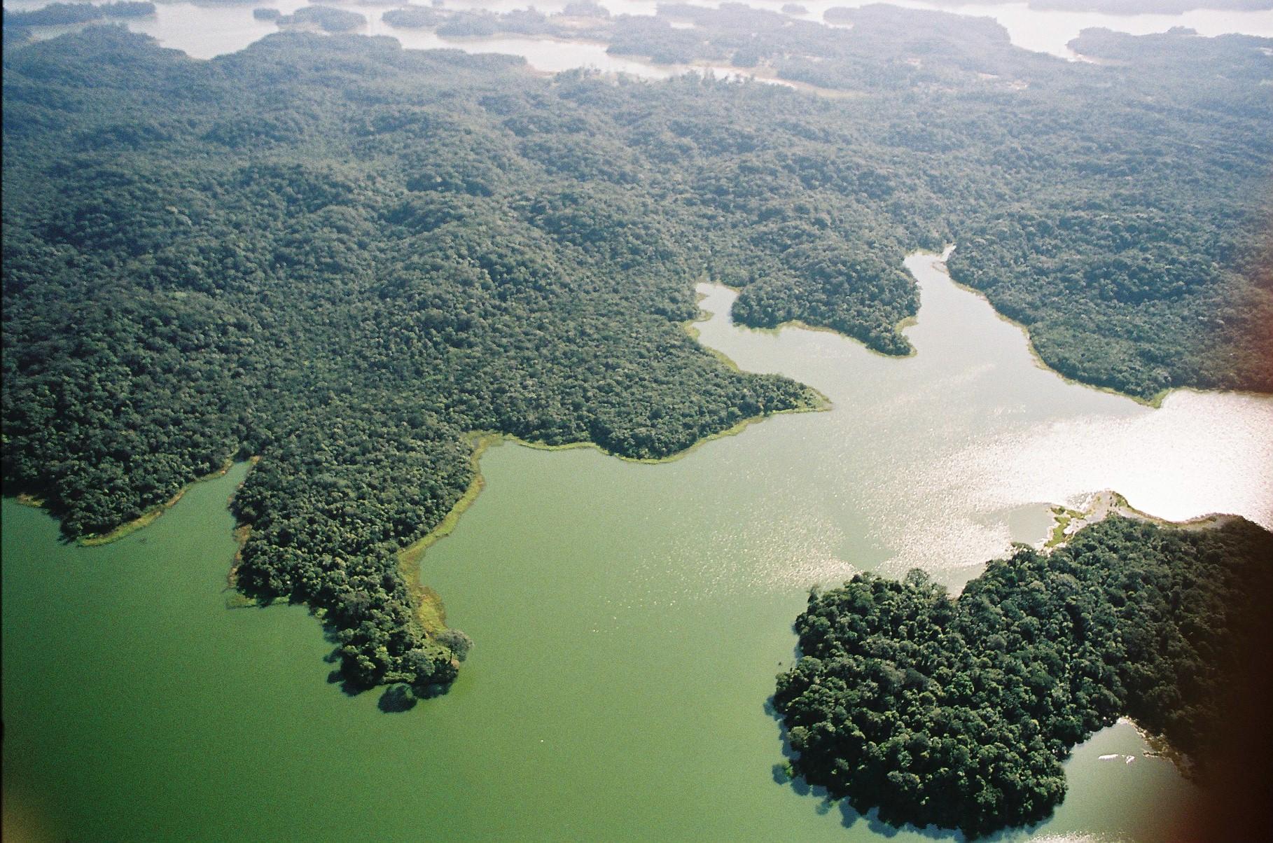 Fundação Florestal realiza audiências públicas para criação de novos parques em São Paulo