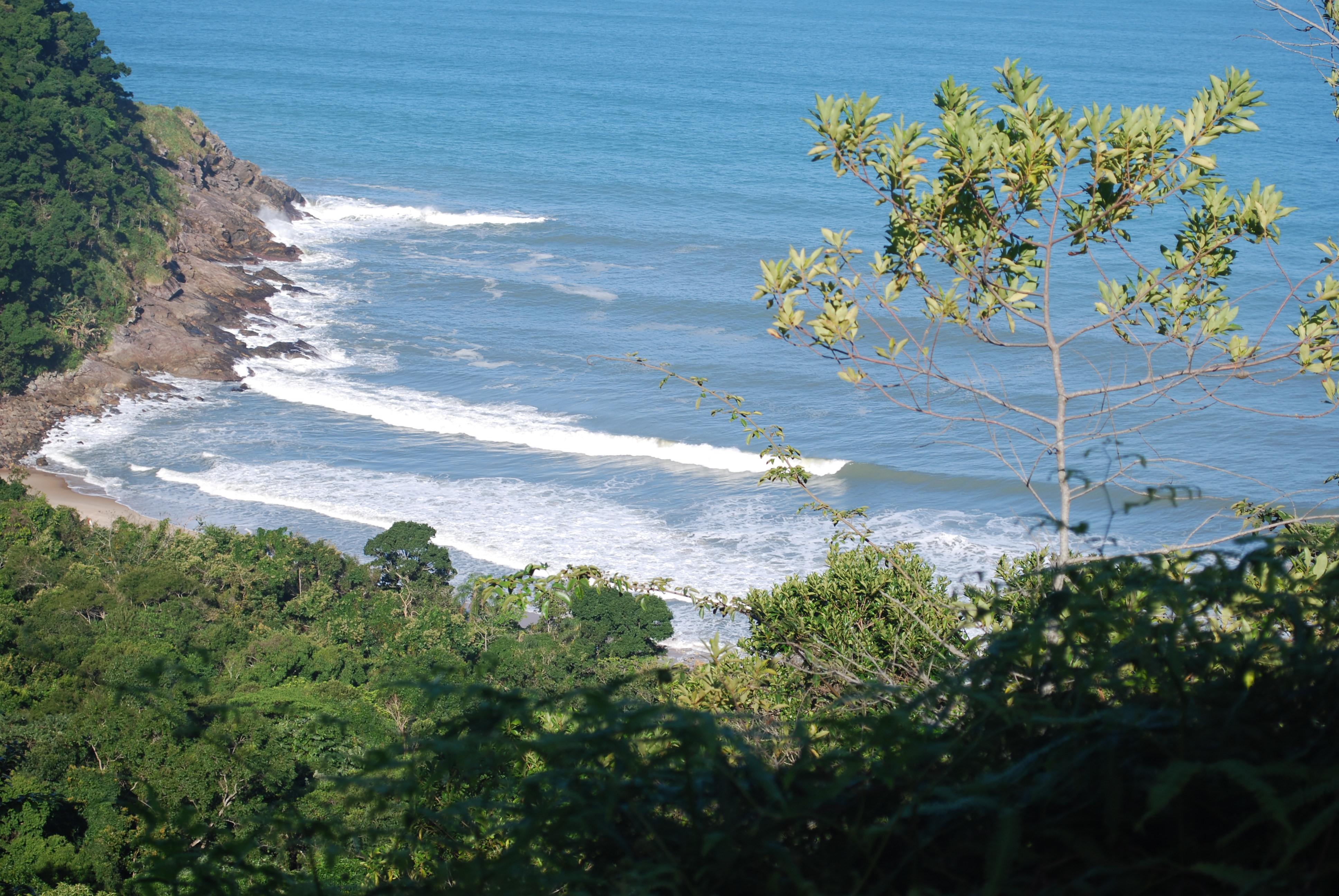 Parque Estadual Serra do Mar é destaque no Programa Vale Ecologia