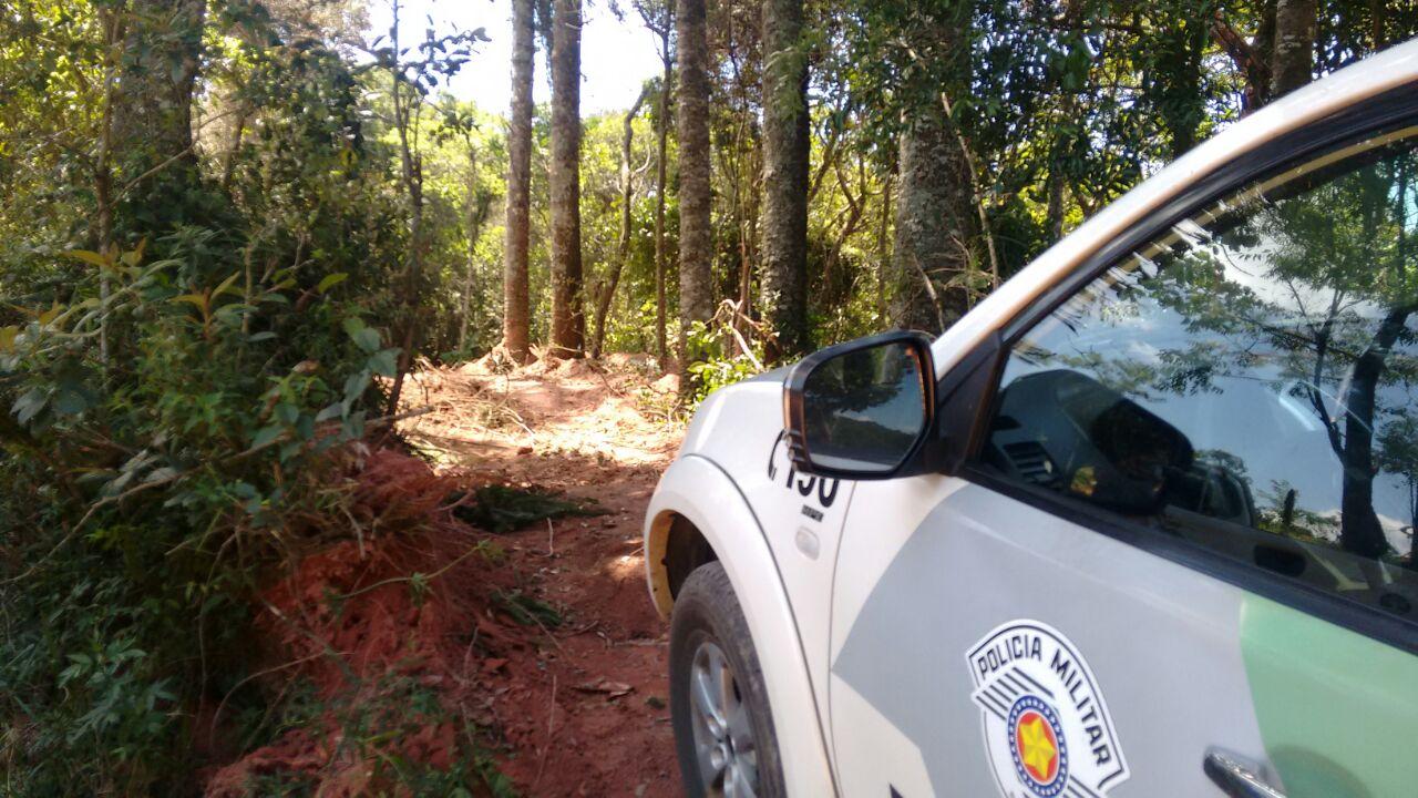Fiscalização paralisa desmatamento no entorno do Parque Estadual Itapetinga