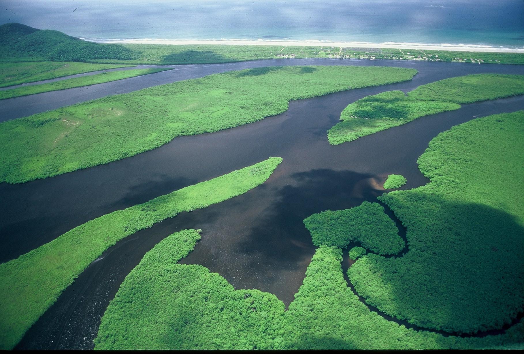 Parque Estadual Ilha do Cardoso comemora Dia Mundial das Zonas Úmidas