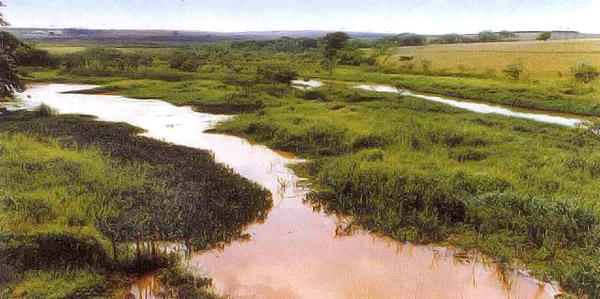 Caminhada e plantio de mudas marcam 31 anos da APA Ibitinga
