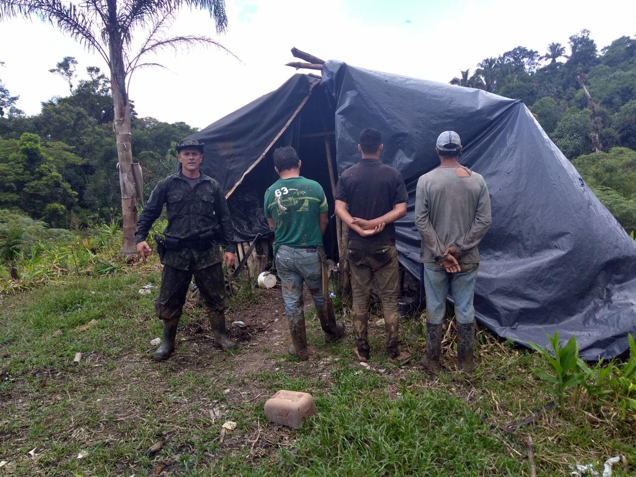 Três palmiteiros presos no Parque Estadual Rio Turvo