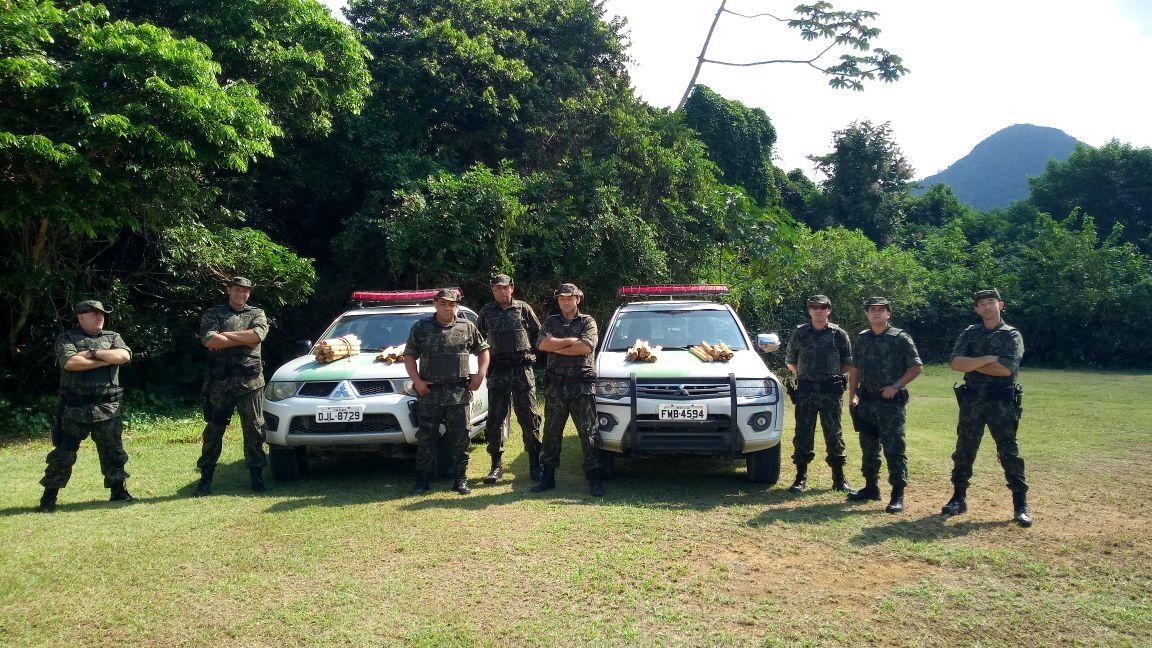 Palmiteiros flagrados com 250 hastes de palmito juçara no PESM – Núcleo Caraguatatuba