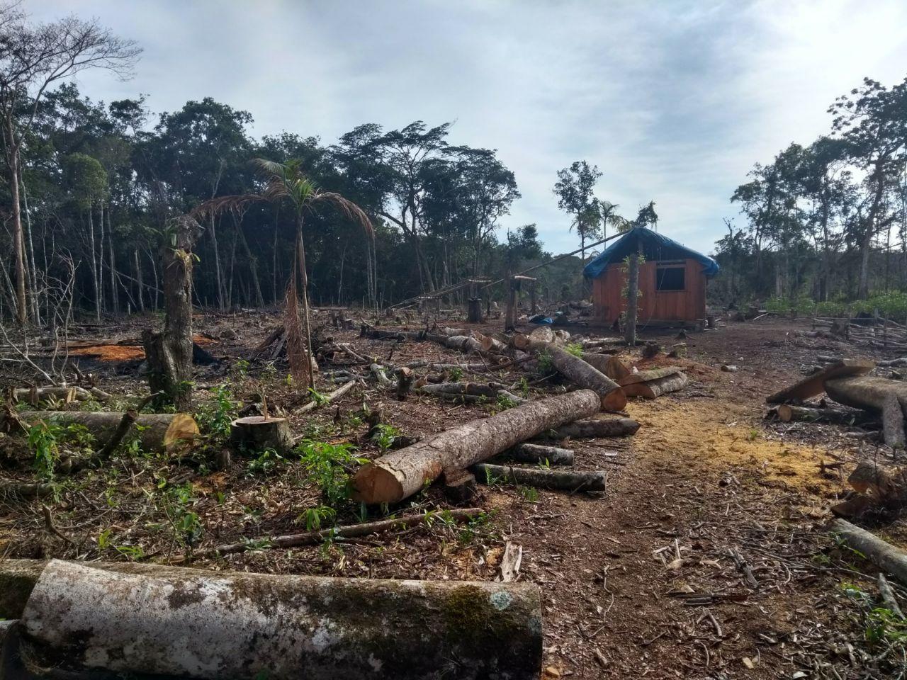 Rancho de caça desbaratado no entorno da Estação Ecológica Chauás