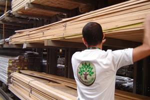 Agente da SMA medindo volume de madeira