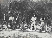 Transporte de Sucuris - Rio Grande