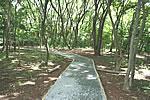 dica de férias: parque villa lobos Dica de Férias: Parque Villa Lobos parqueHoje6