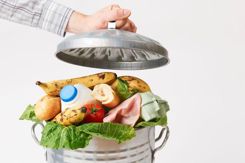 Minicurso de Utilização Integral de Alimentos