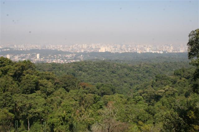 ICMS Ecológico distribuiu R$ 92 milhões a 185 municípios paulistas em 2010