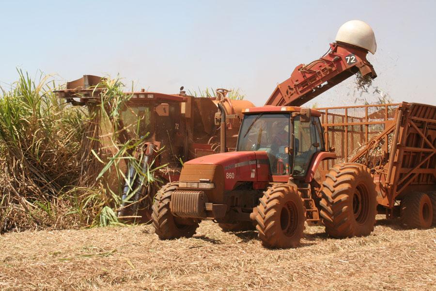 Metas para o fim da queima da cana-de-açúcar são alcançadas em SP