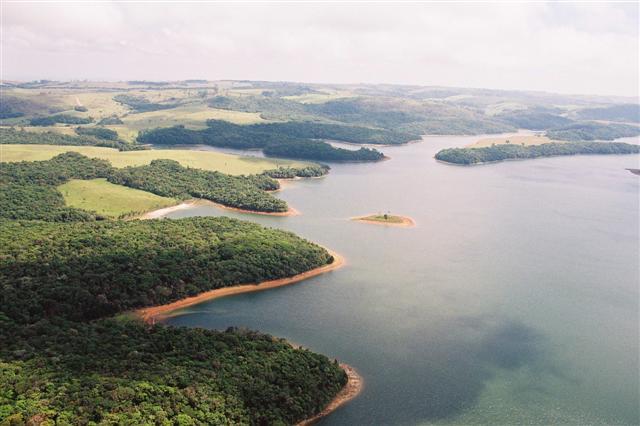 Fundação Florestal lança livro sobre biodiversidade