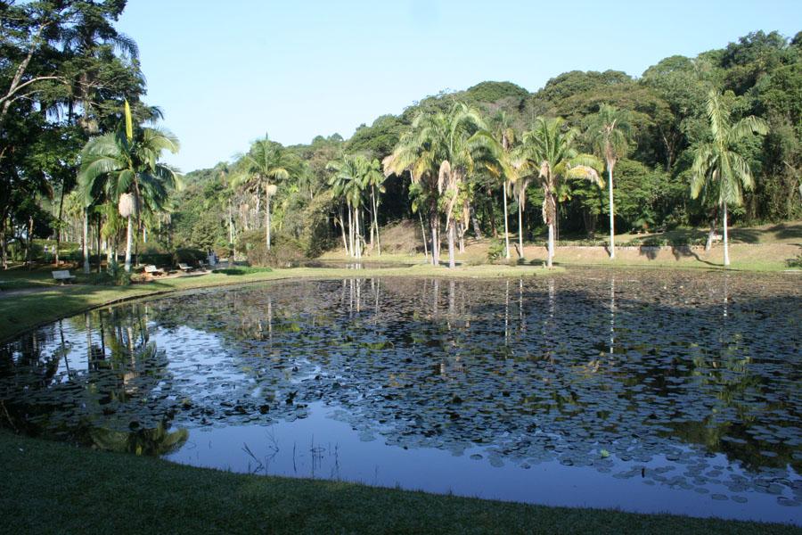 """Jardim Botânico sedia premiação """"Ao redor do mundo 2011"""""""