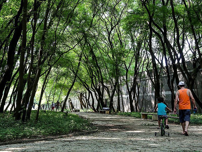 O que fazer no final de semana nos parques de São Paulo