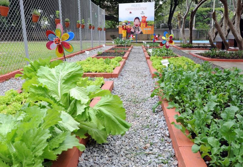 Extremamente Institutos ganharão projeto Horta Educativa   Notícias UB39