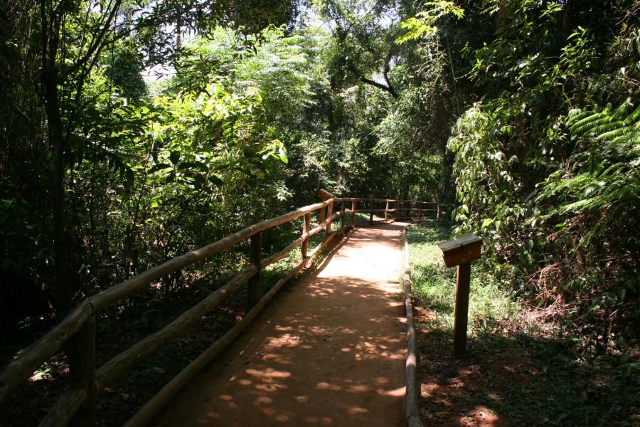 Esclarecimentos sobre a concessão de áreas do Parque Jaraguá