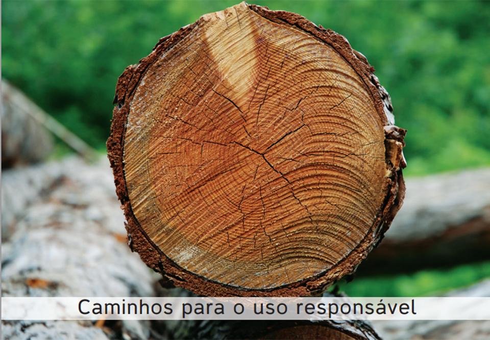 Evento avalia ações de incentivo ao uso de madeira legal em SP
