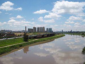 Entrevistas com Bruno Covas sobre testes para despoluir o Rio Pinheiros