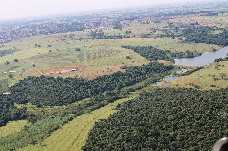 SMA cria Floresta Estadual do Noroeste Paulista