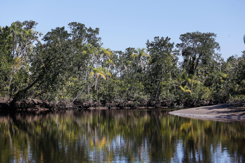 Parque Estadual Restinga de Bertioga abre duas trilhas para visitação