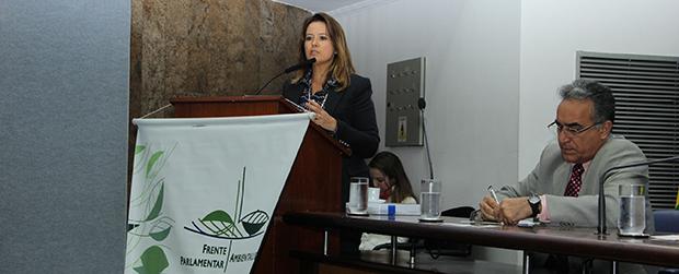 Evento em SP prepara contribuição para debate sobre clima em Paris