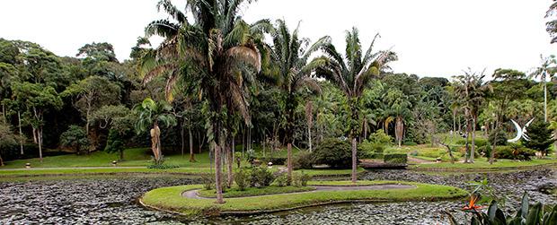 Jardim Botânico abre as portas no aniversário de São Paulo