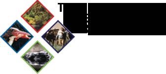 Oportunidade de contratação para elaboração do Estudo de Economia dos Ecossistemas e da Biodiversidade (TEEB)