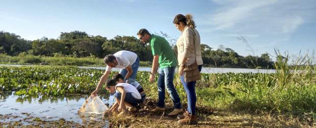 PE Morro do Diabo recebe 75 mil alevinos do peixe curimbatá