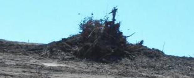 PM Ambiental combate crimes ambientais em Garça e Rinópolis