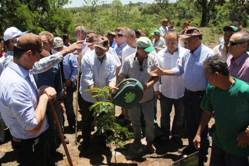 Assentamento Florestan Fernandes tem plantio do Programa Nascentes