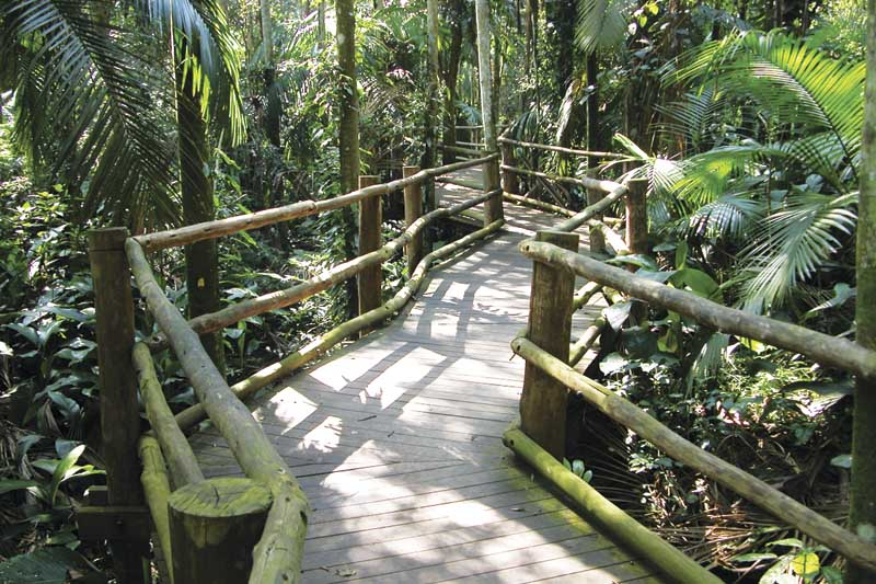 Parques de SP investem em acessibilidades nas trilhas