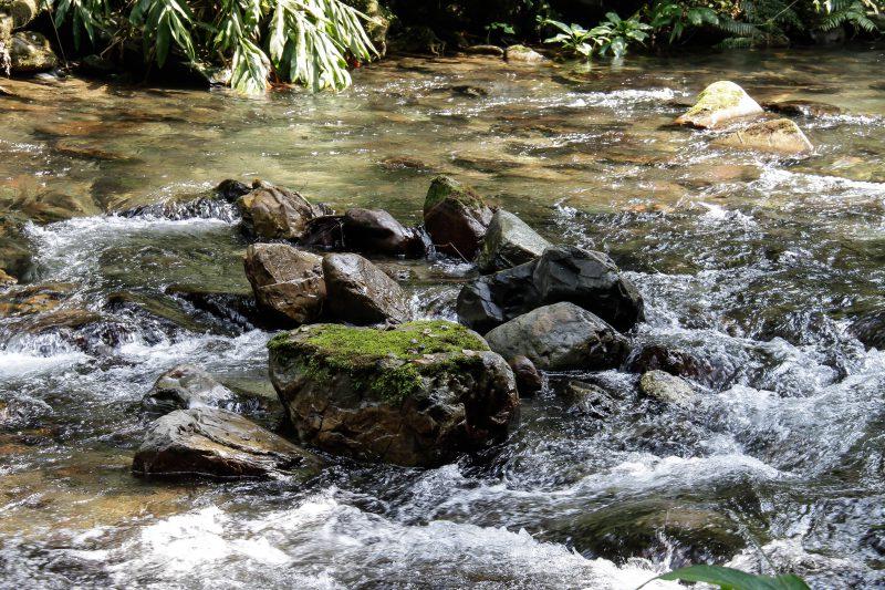 Conheça os diferentes tipos de água
