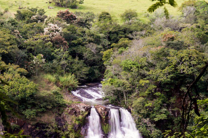 PE Furnas do Bom Jesus completa 26 anos de conservação ambiental
