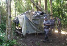 Operação fecha acampamento de palmiteiros em Iguape