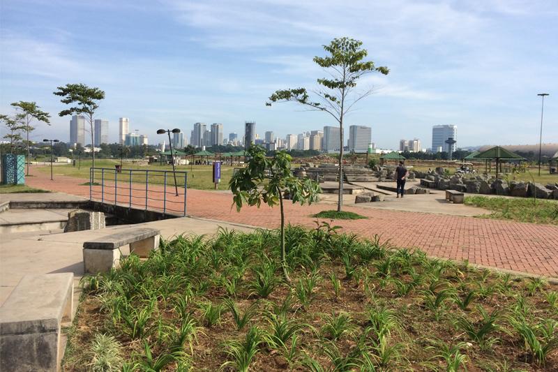 Parque Gabriel Chucre receberá 17 mil mudas de árvores