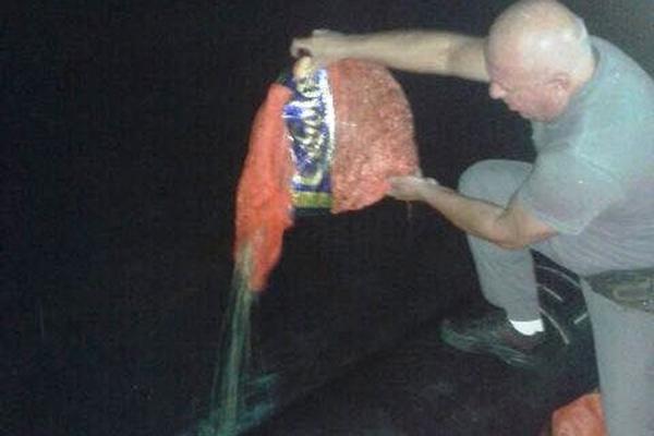 PM flagra extração ilegal de molusco em parque no litoral de SP