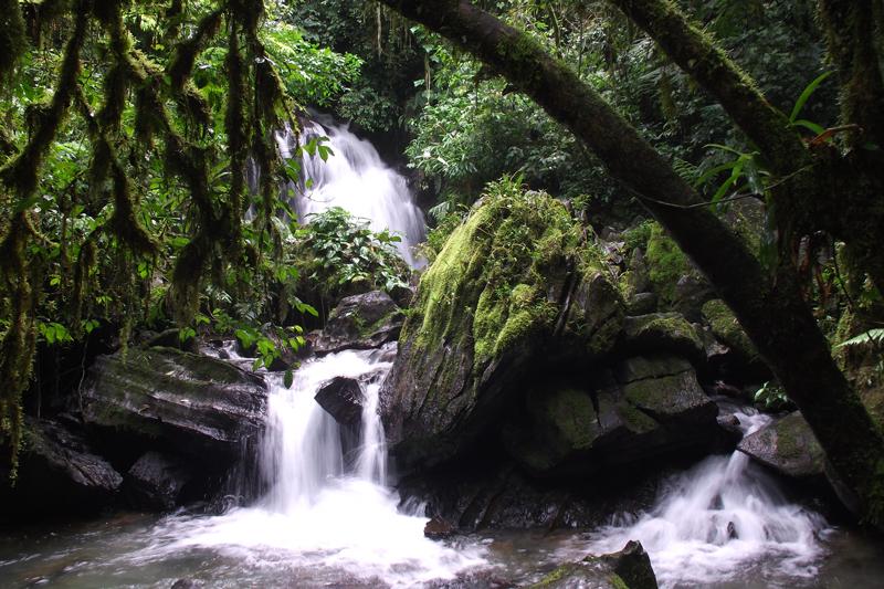 PETAR, 59 anos de conservação das belezas naturais no Alto Ribeira