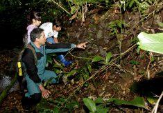 Turismo Sustentável é tema do Dia Internacional da Biodiversidade