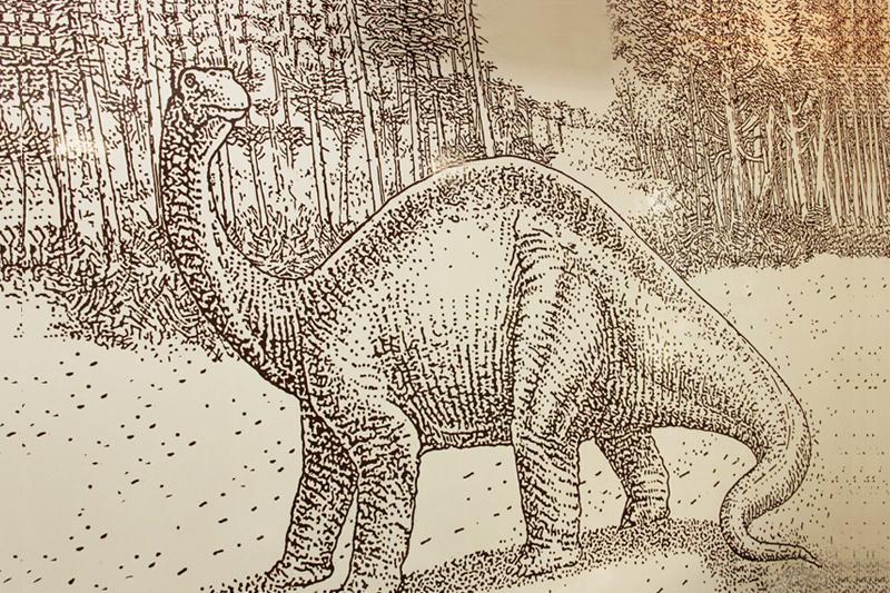 Museu Geológico exibe fósseis de dinossauros que viveram em SP