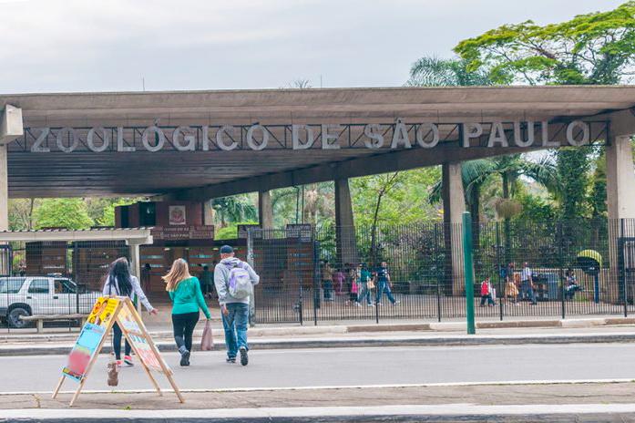 Zoológico de São Paulo abre concurso público para 15 vagas