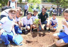 Dia da Árvore é celebrado com plantios de espécies da nossa flora