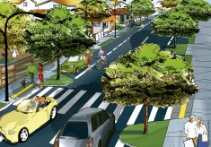 Arborização e bem-estar da cidade
