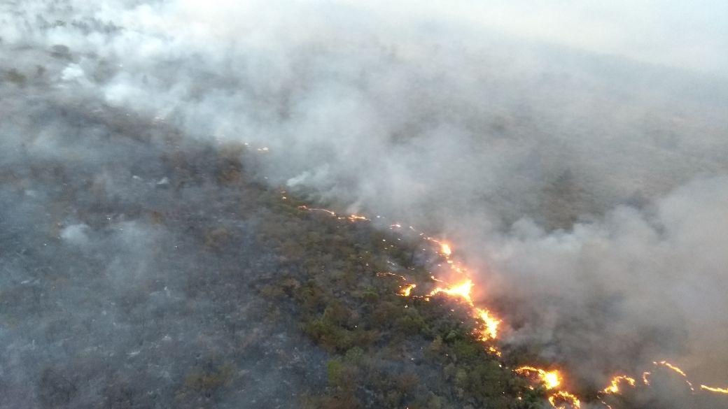 Operação Corta-Fogo segue combatendo incêndios em áreas florestais