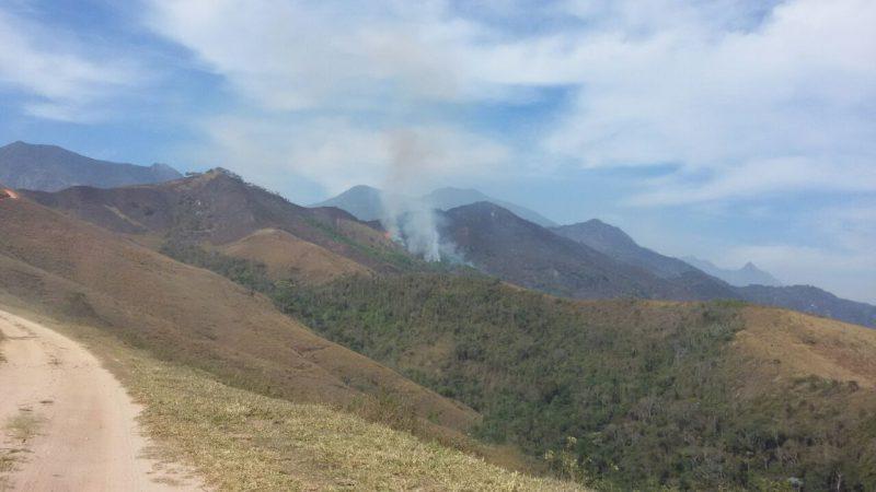 Esforço de brigadistas protege E.E. Bananal de incêndio florestal