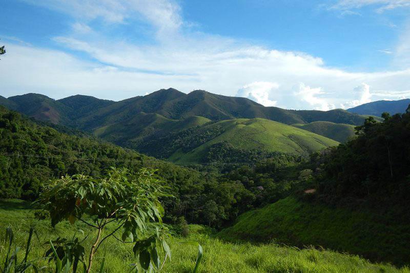 Florestas paulistas: patrimônio econômico e social estratégico