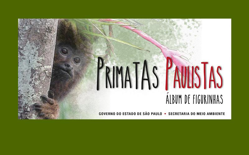 Conheça os primatas paulistas em um clique
